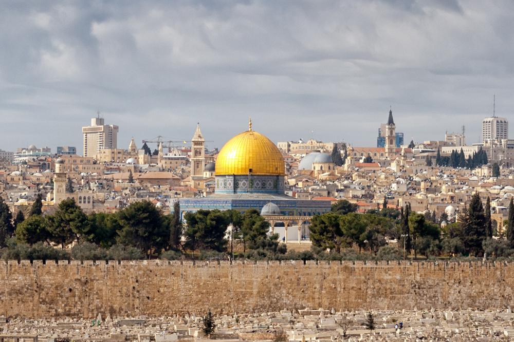 فلسطین مسئله انسان ها